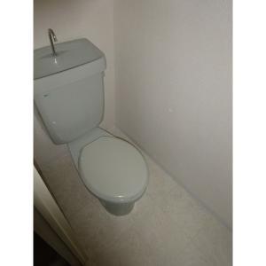 セジュール金山 部屋写真4 トイレ