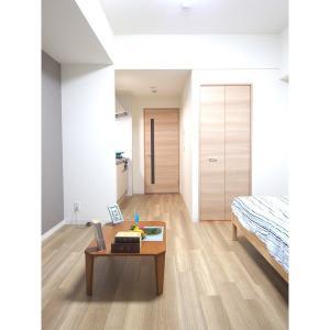 レジデンス SUN.K 部屋写真1 居室・リビング