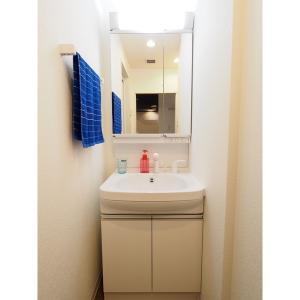 アビタシオン今池パルク 部屋写真4 独立洗面台