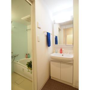 アビタシオン今池パルク 部屋写真5 独立洗面台