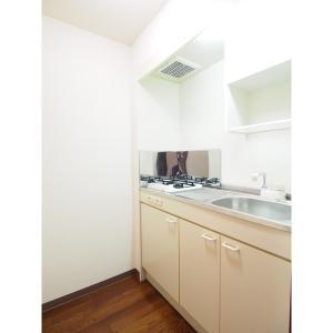 クレセール・タカミ 部屋写真2 キッチン
