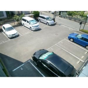 グレース昭和園 物件写真4 駐車場