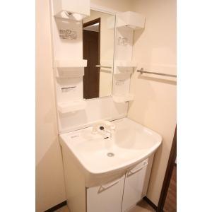 グレース昭和園 部屋写真5 洗面所