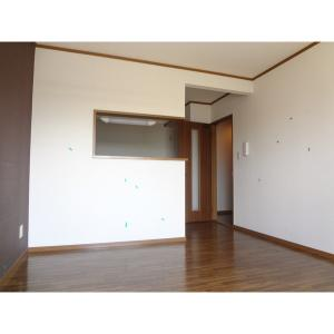タートルリバー弐番館 部屋写真1 居室・リビング