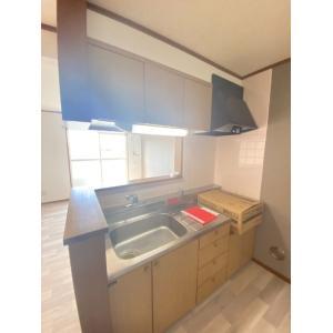 タートルリバー弐番館 部屋写真2 居室・リビング