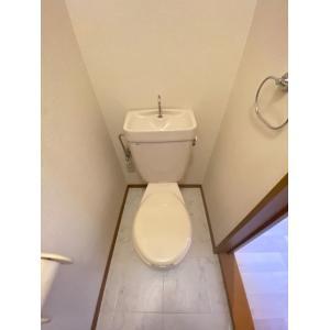 タートルリバー弐番館 部屋写真4 トイレ