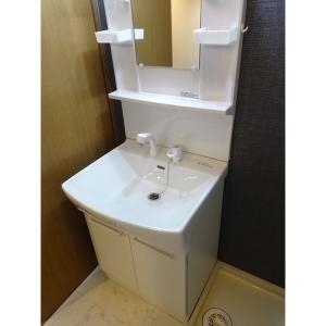 ナスキー 部屋写真2 洗面所