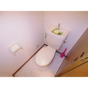 ヴァロワール 部屋写真4 トイレ
