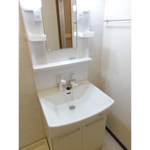 【ALL洋室】ヴィラ花田 部屋写真4 洗面所
