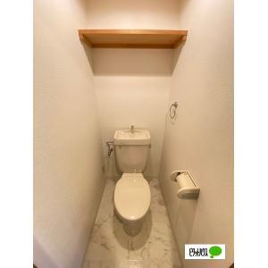 アネシス 部屋写真4 洗面所