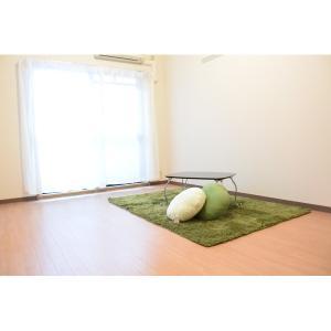 【市大生にオススメ】パトリス 部屋写真1 居室・リビング
