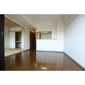 セレブラール摂津 部屋写真1 居室・リビング