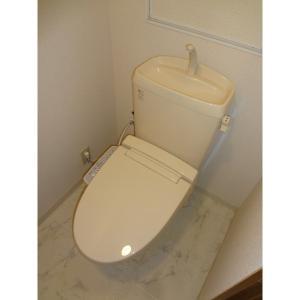 セレブラール摂津 部屋写真5 トイレ