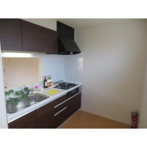 ANNEX釣月居 部屋写真2 キッチン