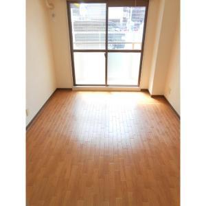ラルジュール江坂 部屋写真1 居室・リビング