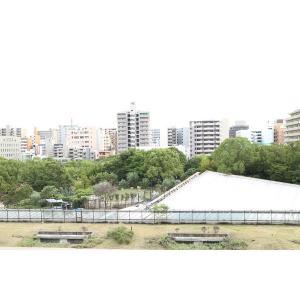 江坂OMパレス 物件写真4 江坂公園が目前です
