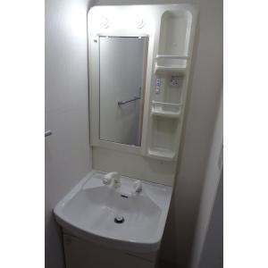 カルム千昇Ⅱ 部屋写真5 洗面所