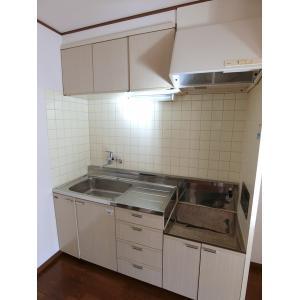 ツインパレスTSUKASAⅡ 部屋写真2 キッチン