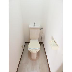 ツインパレスTSUKASAⅡ 部屋写真4 トイレ