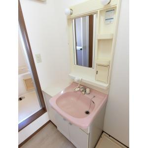 ツインパレスTSUKASAⅡ 部屋写真5 洗面所