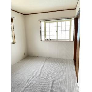 カーサ・アマリーロ 部屋写真6 居室・リビング