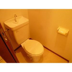パインコートⅢ 部屋写真6 トイレ