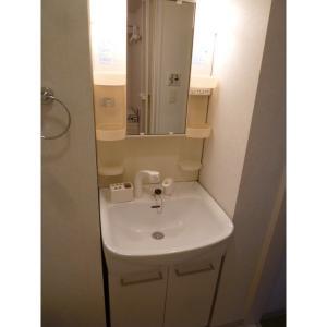 アーバングリッド 部屋写真5 洗面所