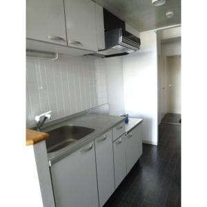 アーバングリッド 部屋写真2 キッチン