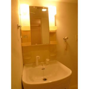 アーバングリッド 部屋写真6 洗面所