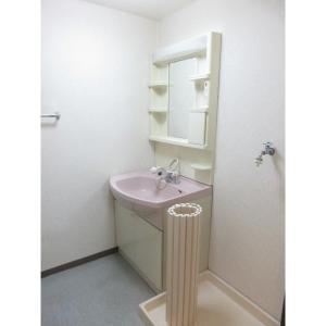 ルミエール 部屋写真5 洗面所