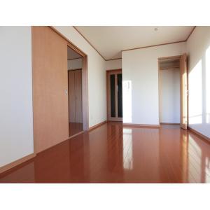 パインコートⅤ 部屋写真1 居室・リビング