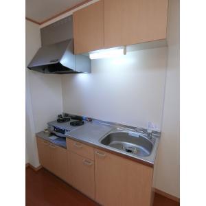パインコートⅤ 部屋写真2 キッチン