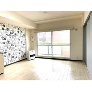 αNEXT札幌第9 部屋写真1 居室・リビング