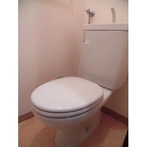 グランバレ 部屋写真5 トイレ