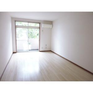 αNEXT高崎第4 部屋写真1 居室・リビング