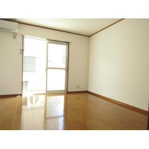 セカンドパルティール 部屋写真1 居室・リビング