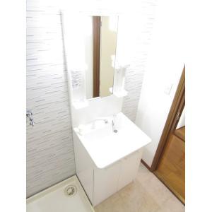 セカンドパルティール 部屋写真4 洗面所