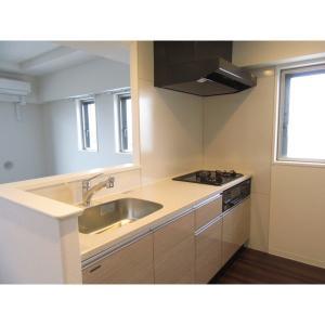 グリーブ 部屋写真3 キッチン