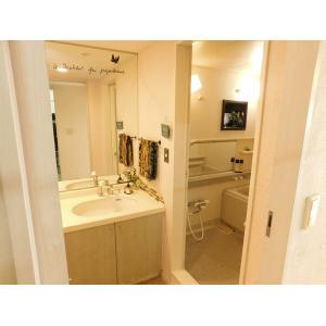 港北ニュータウンイオ 10番館 部屋写真3 洗面所
