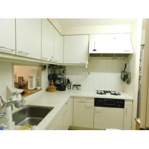 港北ニュータウンイオ 10番館 部屋写真4 キッチン