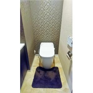 ワールドシティタワーズ・アクアタワー 部屋写真5 トイレ