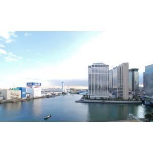 ワールドシティタワーズ・アクアタワー 部屋写真6 眺望