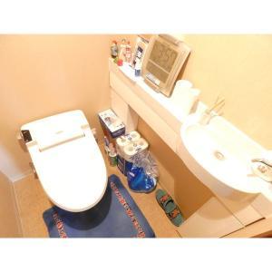 THE TOWERS DAIBA 部屋写真3 専用の手洗い場も御座います