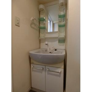 ハイライフ立川 部屋写真6 独立洗面台