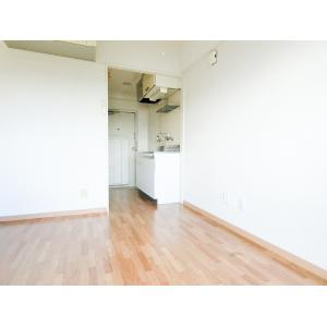 メゾン・ド・アンジェ 部屋写真1 居室・リビング