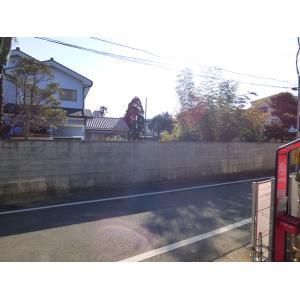 江戸川区松島2丁目 新築戸建 物件写真4 敷地から見た道路面