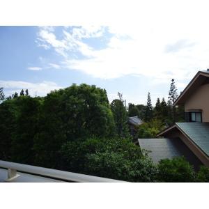 東小松川2丁目第3期 A棟 部屋写真5 バルコニー