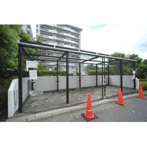 サントゥール中川 物件写真4 駐車場