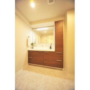 サントゥール中川 部屋写真4 洗面所