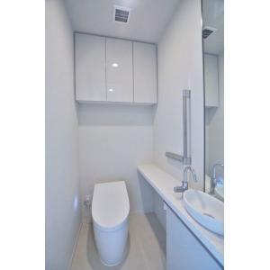 パークコート乃木坂ザタワー 部屋写真5 トイレ